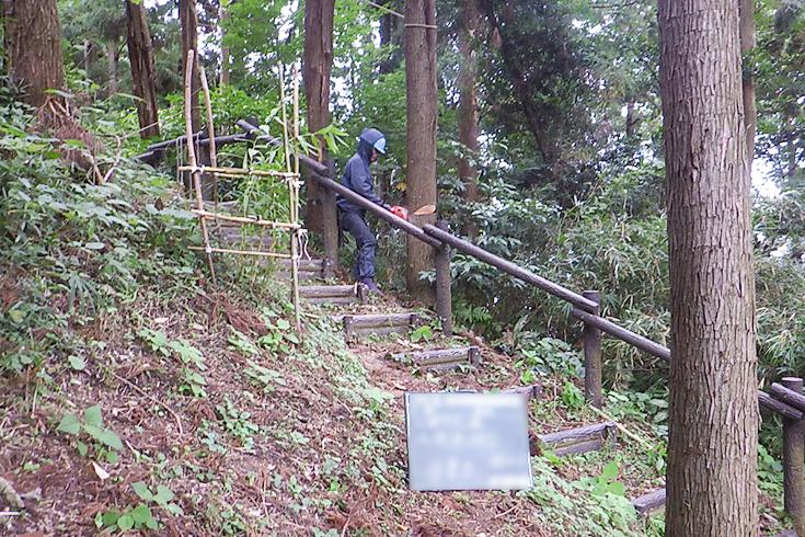 森林での伐採や階段づくりの例